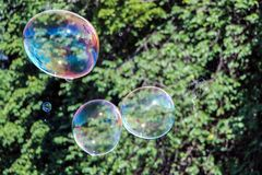 Colorful soap bubbles in air. Colorful soap bubbles fly in air Royalty Free Stock Photography