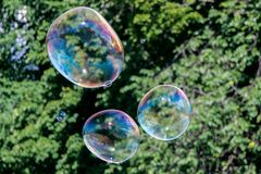 Colorful soap bubbles in air. Colorful soap bubbles fly in air Royalty Free Stock Photo