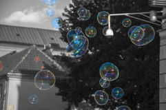 Colorful soap bubbles wth black white background.  Stock Photography