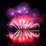 Colorful spectacular fireworks Stock Image