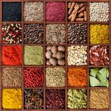 Colorful spice background. Spice background. Assortment of spices and seasoning in square wooden box with many compartments top view royalty free stock images