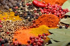 Colorful spices Stock Images