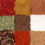 Colorful Spices Royalty Free Stock Photos