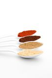 Colorful spices. Colorful aromatic spices on white plastic spoons stock images