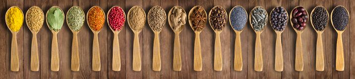 Colorful spices on background wooden table. Seasonings and herbs in wooden spoons for design website headers. Spices and herbs on wooden table as background for royalty free stock photo