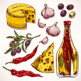 Colorful spices, cheeses and vegetables Stock Photos