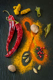 Colorful spices: chili, turmeric, cardamom, nutmeg and lemon grass. Design on a blackboard chalk. Royalty Free Stock Image
