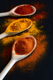 Colorful spices on cooking spoons Royalty Free Stock Image