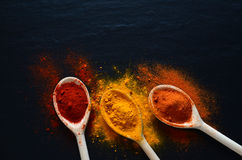 Colorful spices on cooking spoons Stock Photography