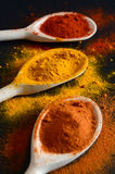 Colorful spices on cooking spoons Royalty Free Stock Images