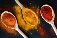 Colorful spices on cooking spoons Stock Images