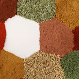 Colorful spices and herbs Royalty Free Stock Images