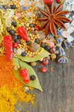 Colorful spices and herbs Royalty Free Stock Photos