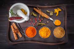 Colorful spices and herbs in a vintage style Stock Photography