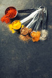 Colorful spices in metal spoons Royalty Free Stock Photos