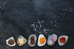 Colorful spices on pebbles Royalty Free Stock Images