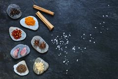 Colorful spices on pebbles with rock salt Royalty Free Stock Image