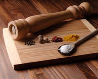 Colorful spices with pepper mill Stock Photos
