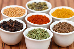 Colorful spices in pots Stock Image