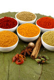 Colorful spices powders Stock Photo