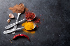 Colorful spices in spoons. Top view with copy space Stock Photos