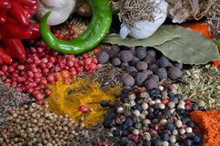 Colorful spices and vegetables Royalty Free Stock Image