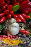 Colorful spices and vegetables Royalty Free Stock Photos