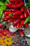 Colorful spices and vegetables Royalty Free Stock Photo