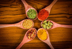 Colorful spices on wood Stock Images