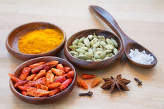 Colorful spices in wooden bowls Royalty Free Stock Photos