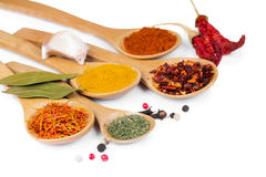 Colorful spices in wooden spoons Royalty Free Stock Images
