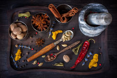 Colorful spices in wooden tray Stock Photography