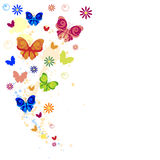 Colorful splash of butterflies, flowers and paint  Stock Photos