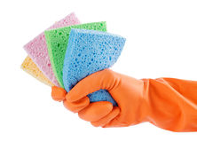 Colorful sponge. Hand with orange glove holding colorful sponges for cleaning stock photos