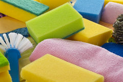 Colorful sponges Stock Image