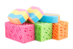 Colorful sponges Stock Images
