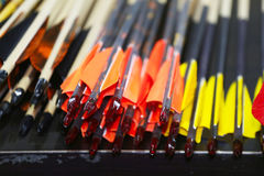 Colorful sport arrows in a row Royalty Free Stock Photo