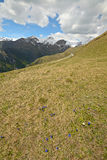 Colorful spring in the Alps Royalty Free Stock Images