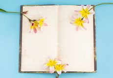 Colorful spring flowers, with blank open diary for text. Colorful spring flowers, with blank open diary for text, on light blue background Stock Image