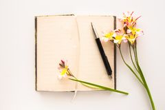 Colorful spring flowers, with blank open diary for text. Colorful spring flowers, with blank open diary for text, on white background Stock Photo