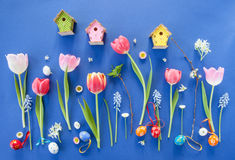 Colorful spring flowers on blue Royalty Free Stock Photography