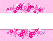 Colorful spring flowers border Royalty Free Stock Photo