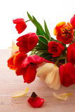 Colorful spring flowers bouquet tulips Royalty Free Stock Photo