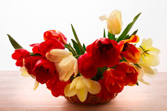 Colorful spring flowers bouquet tulips stock photography