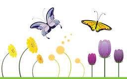 Colorful Spring Flowers and Butterfly Stock Photos