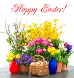 Colorful spring flowers and easter eggs decoration Royalty Free Stock Images