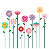 Colorful spring flowers field illustration isolated on white background Stock Image