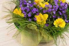 Colorful spring flowers in a green bowl of glass - daffodils, primrose Royalty Free Stock Images