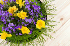 Colorful spring flowers in a green bowl of glass - daffodils, primrose Stock Image