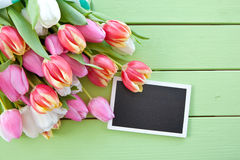 Colorful spring flowers. On green wooden boards royalty free stock images